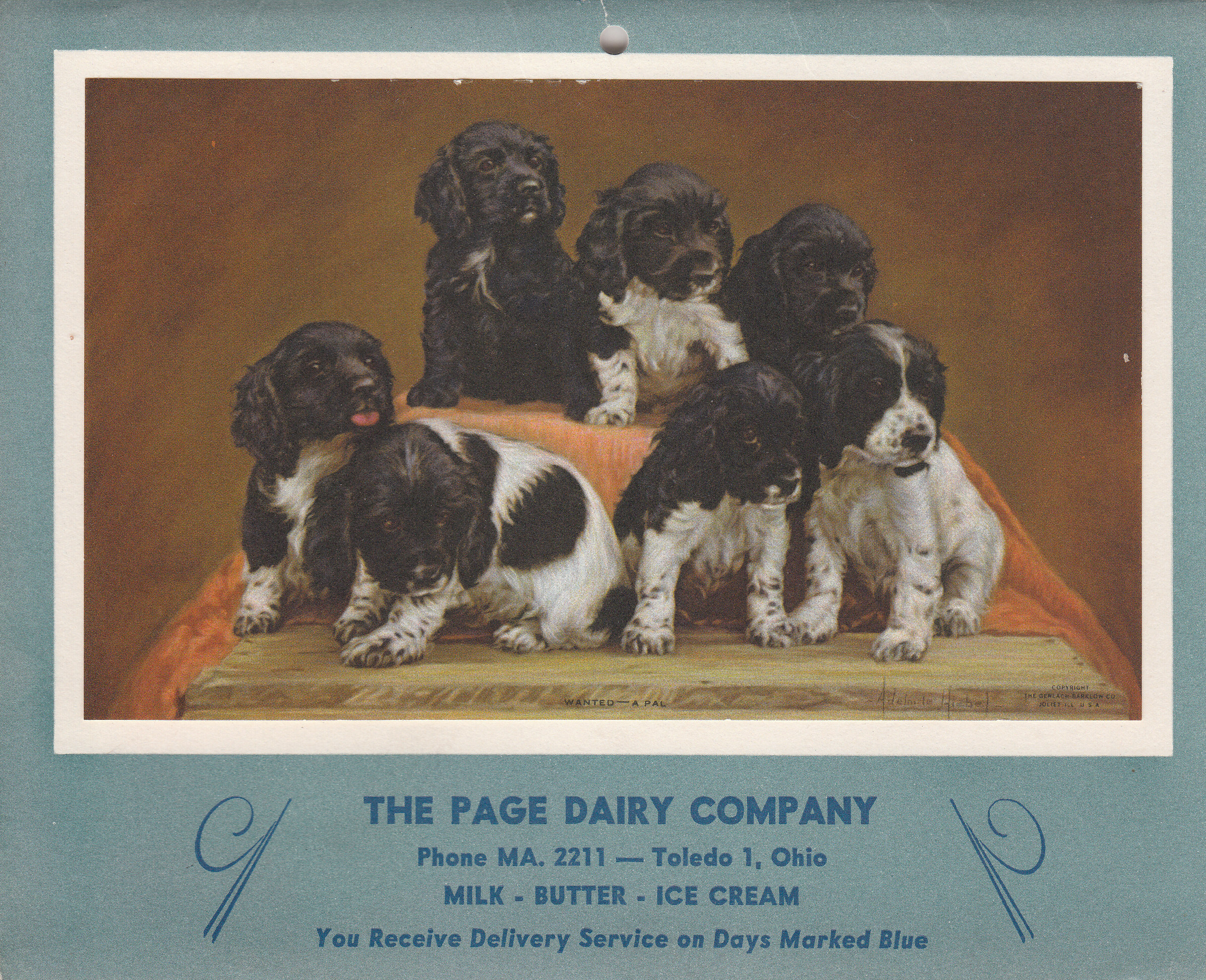 Page Dairy Calendar 1954