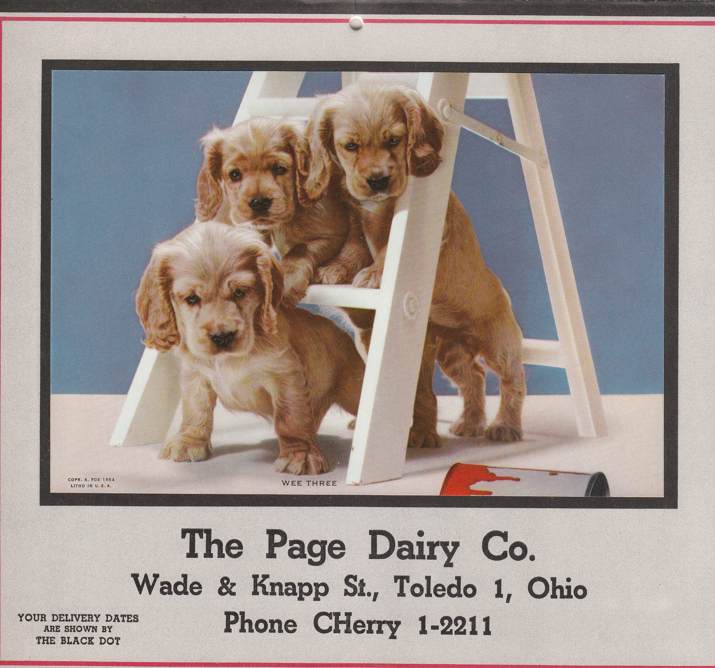 Page Dairy Calendar 1956