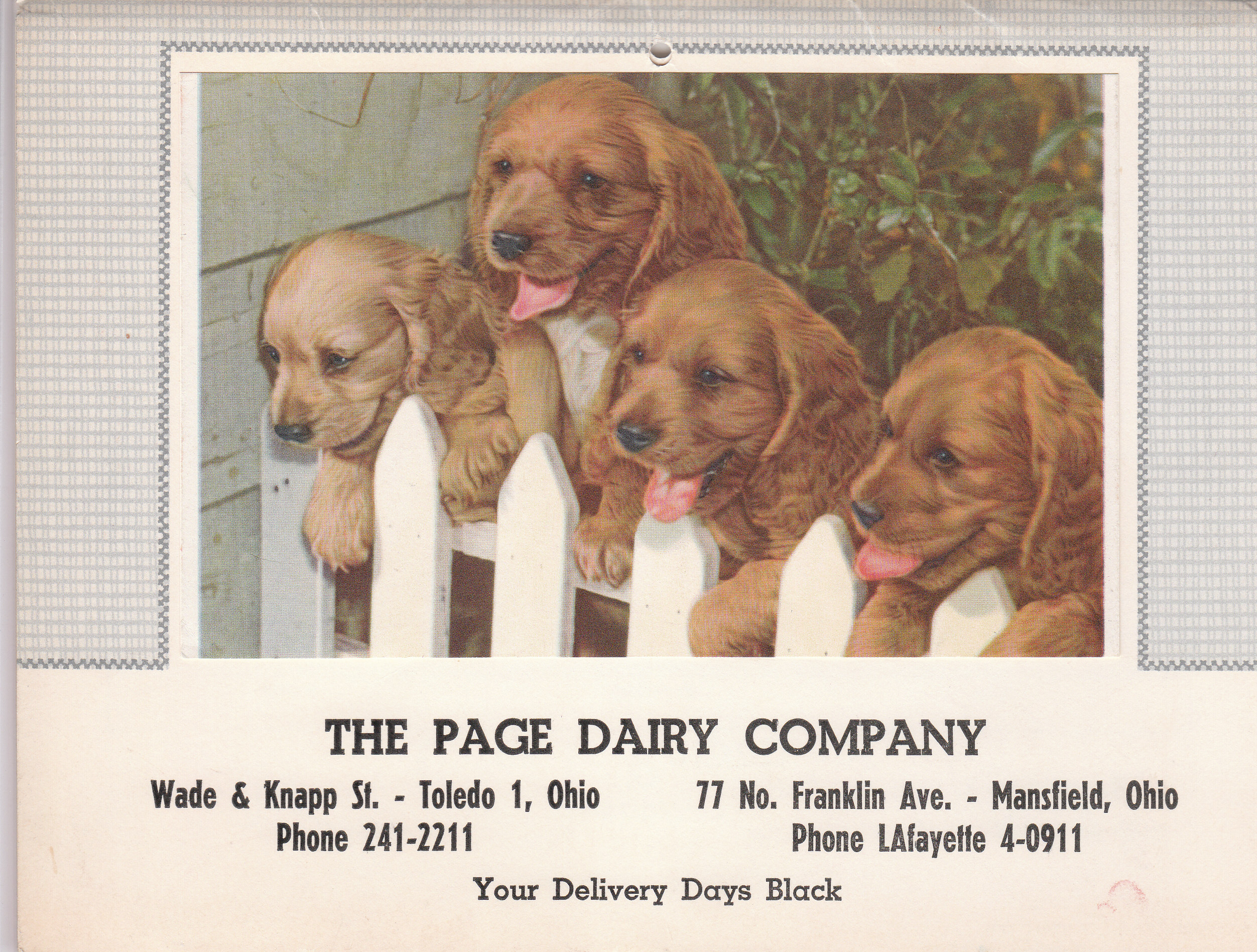 Page Dairy Calendar 1964