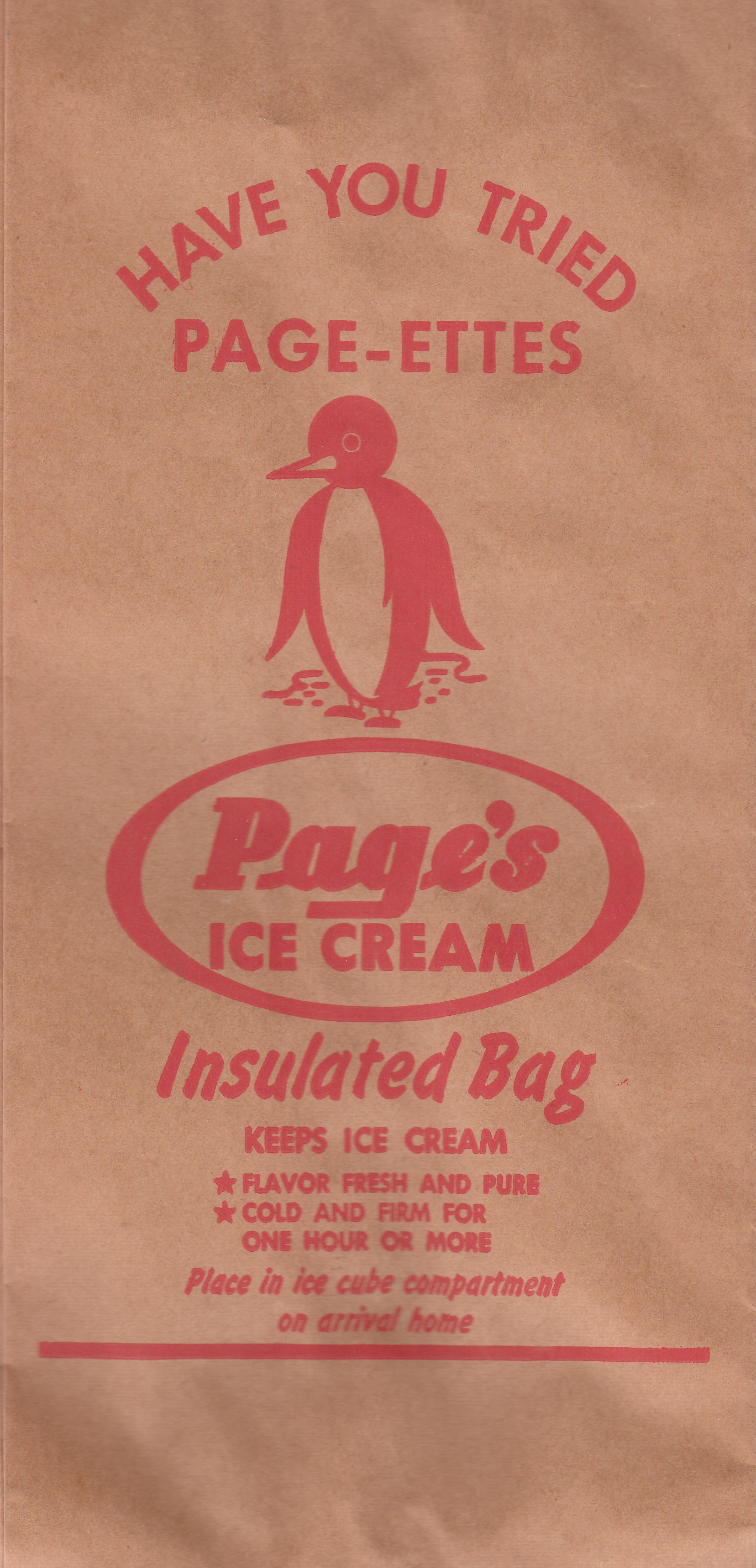Page Dairy Insulated Ice Cream bag