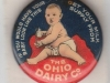 Ohio Dairy Pin