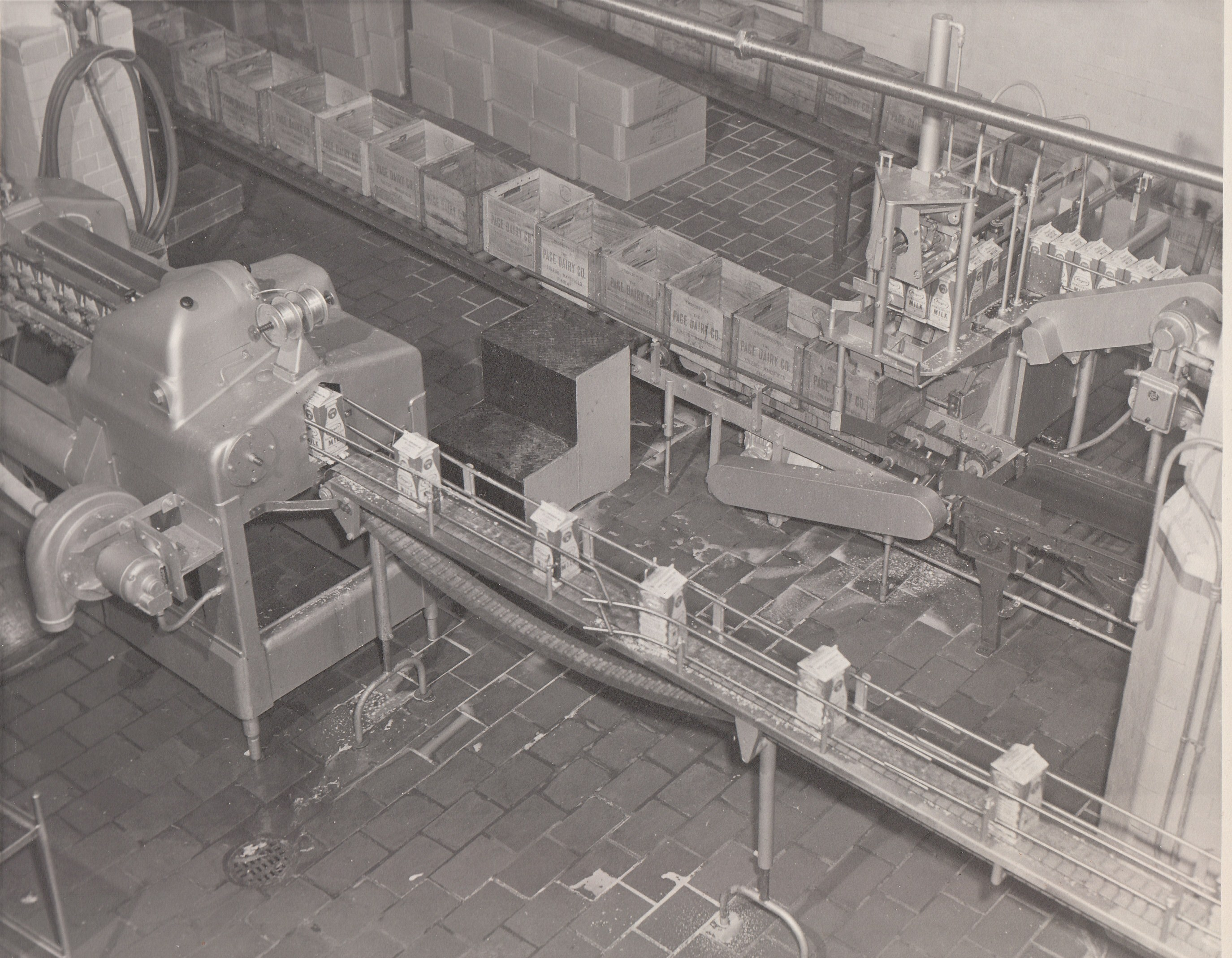 Page Dairy Milk Bottling in Cartons